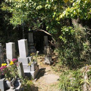 墓参り代行